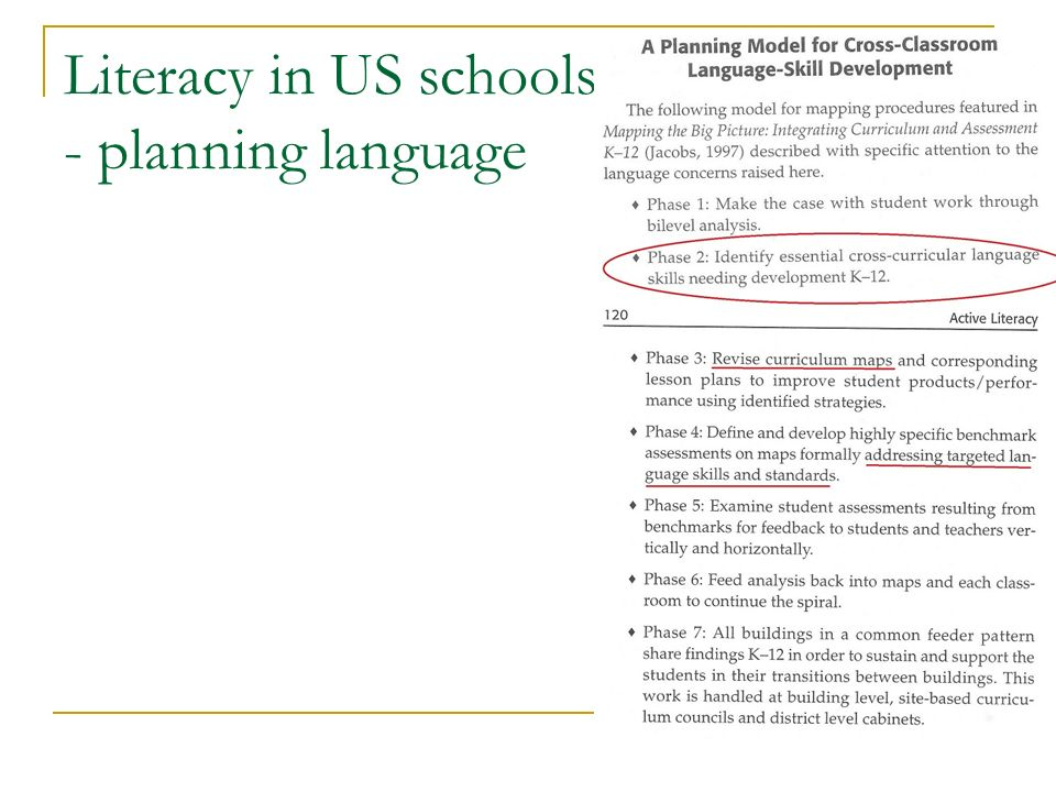 Literacy in US schools - planning language