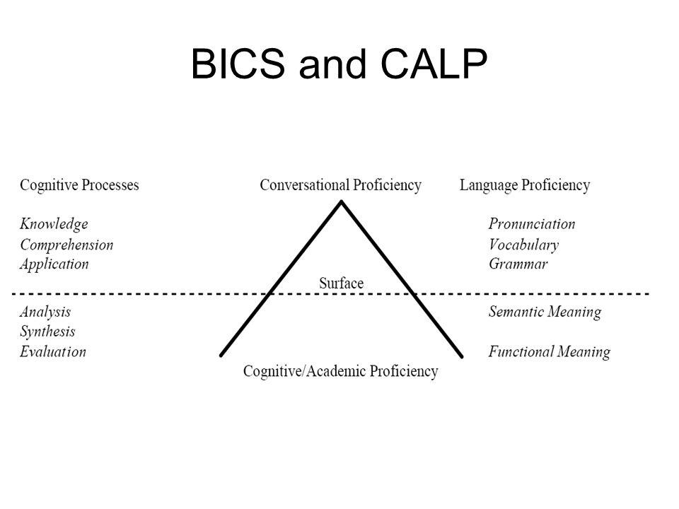 BICS and CALP