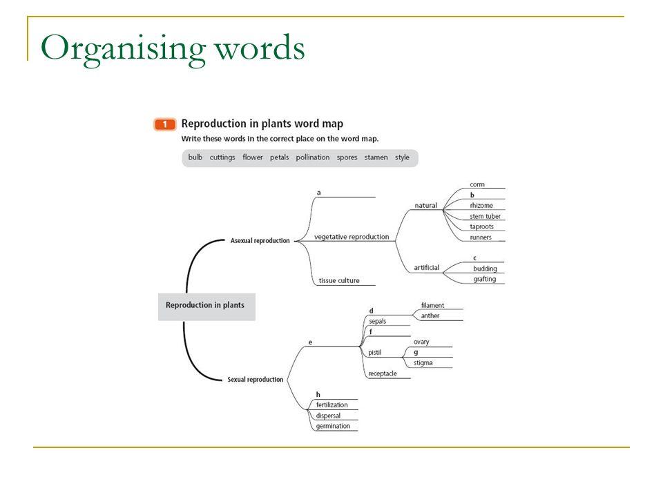 Organising words
