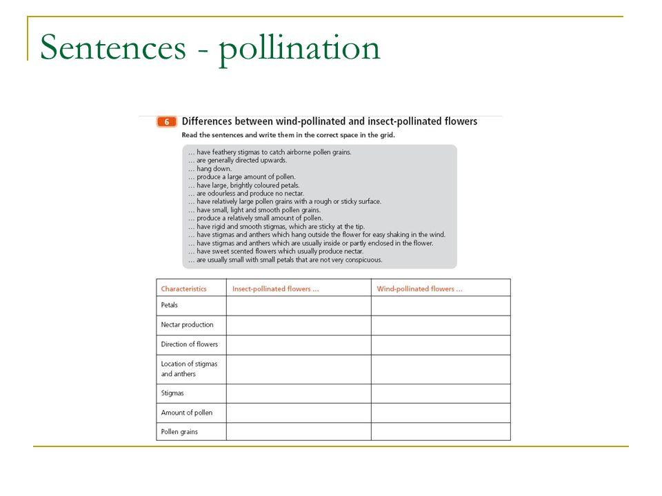 Sentences - pollination