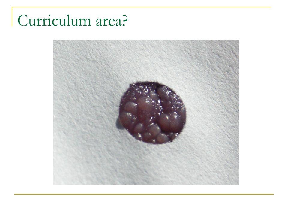 Curriculum area?