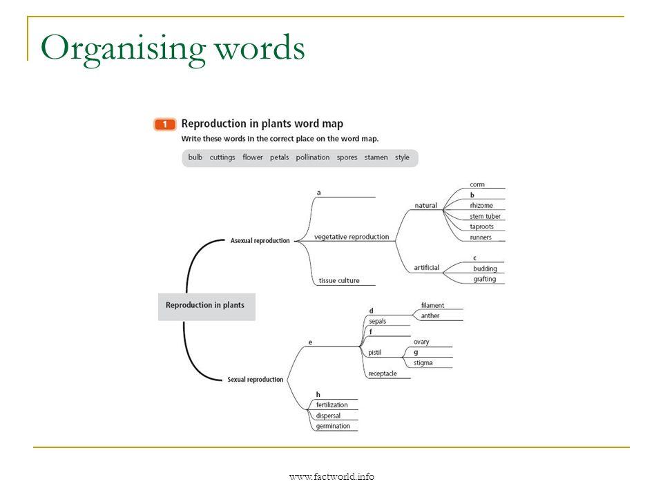 www.factworld.info Organising words