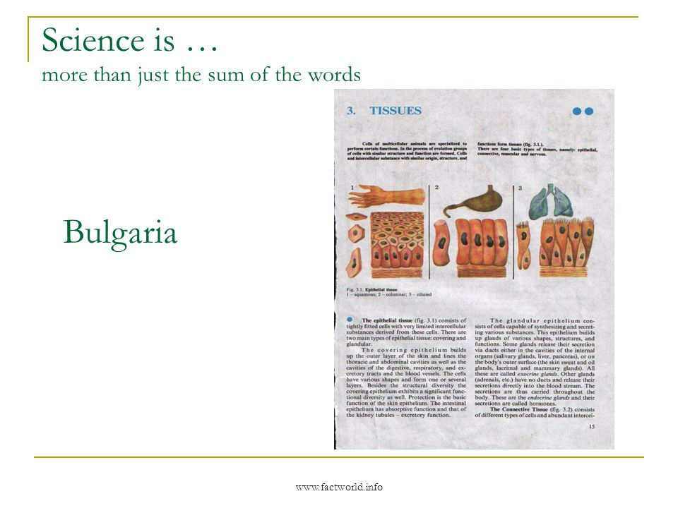 www.factworld.info Science is … more than just the sum of the words Bulgaria