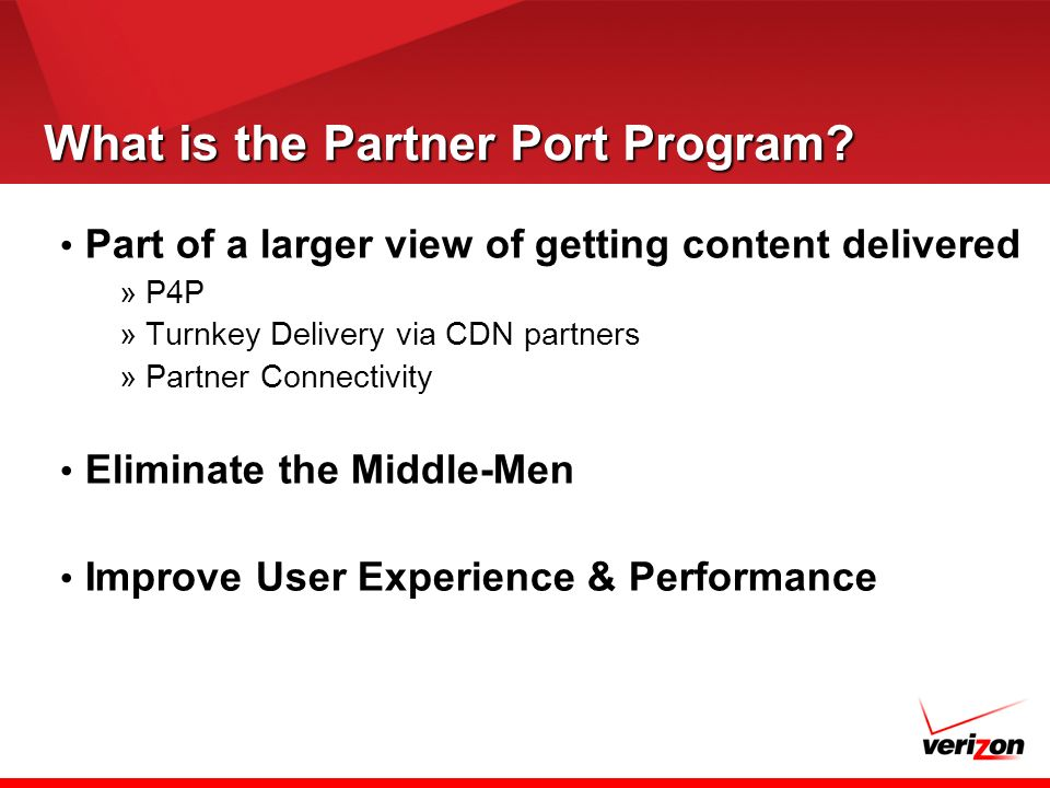 What is the Partner Port Program.