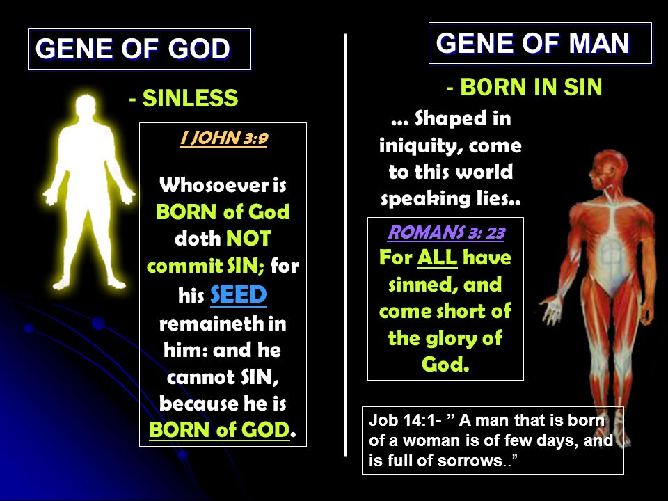 GENE OF GOD GENE OF MAN - SINLESS - BORN IN SIN I JOHN 3:9 Whosoever is BORN of God doth NOT commit SIN; for his SEED remaineth in him: and he cannot SIN, because he is BORN of GOD.