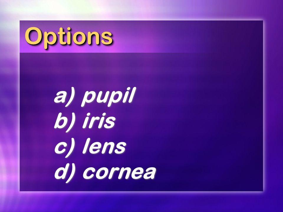 OptionsOptions a)pupil b)iris c)lens d)cornea a)pupil b)iris c)lens d)cornea