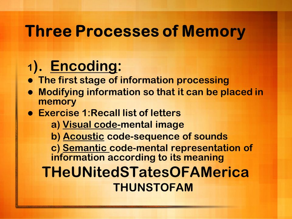 Three Processes of Memory 1 ). Encoding: The first stage of information processing Modifying information so that it can be placed in memory Exercise 1