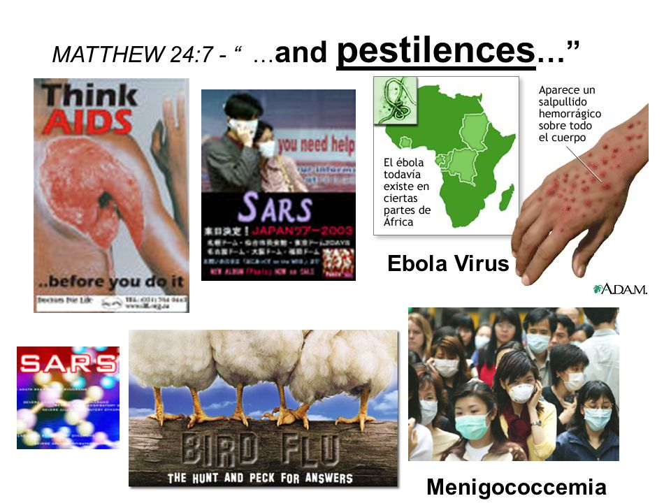Ebola Virus Menigococcemia MATTHEW 24:7 - … and pestilences …