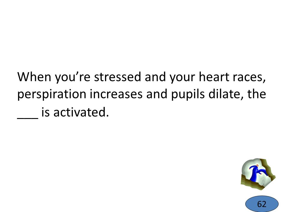 When youre stressed and your heart races, perspiration increases and pupils dilate, the ___ is activated. 62