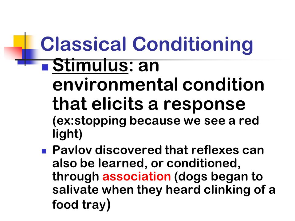 Classical Conditioning Stimulus: an environmental condition that elicits a response (ex:stopping because we see a red light) Pavlov discovered that re