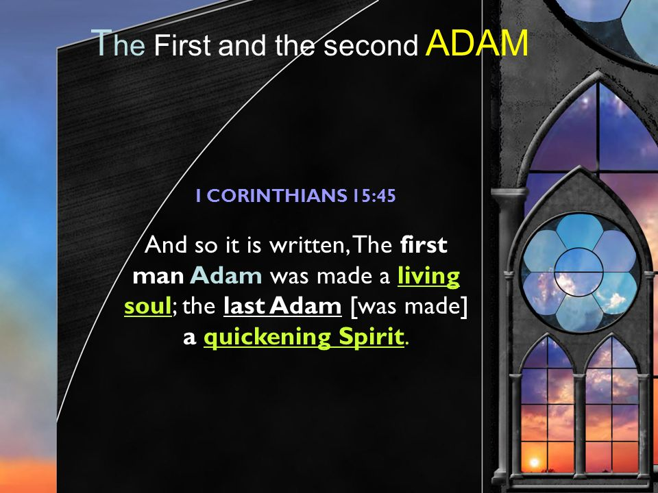 T he First and the second ADAM I CORINTHIANS 15:45 And so it is written, The first man Adam was made a living soul; the last Adam [was made] a quickening Spirit.