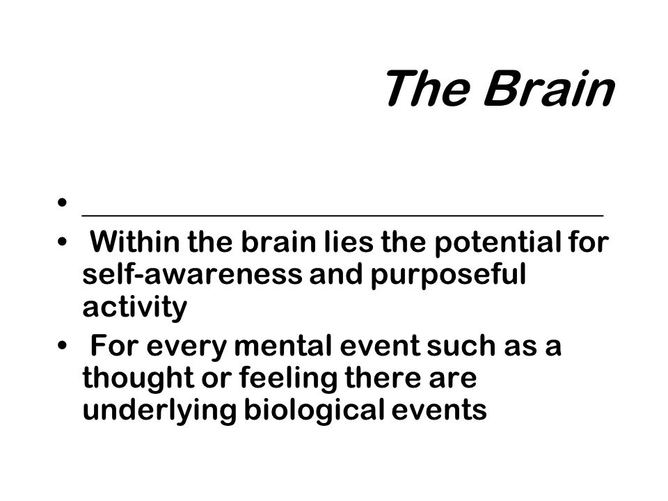 The Brain ___________________________________ Within the brain lies the potential for self-awareness and purposeful activity For every mental event such as a thought or feeling there are underlying biological events