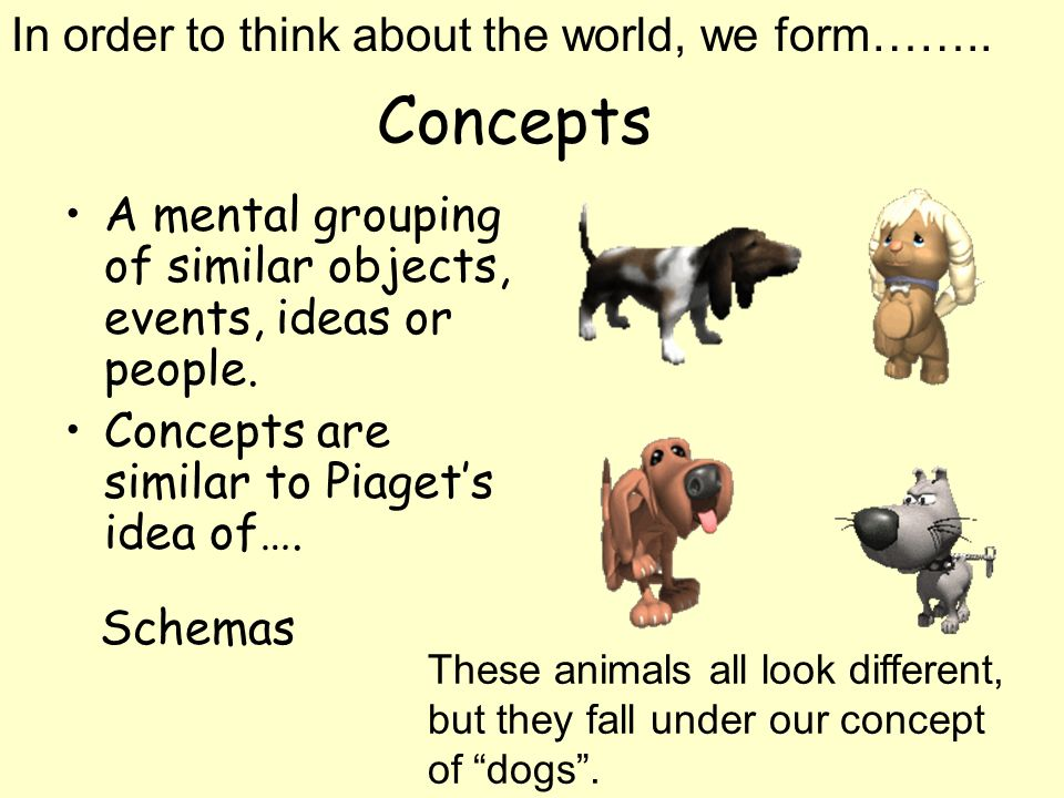 Concepts A mental grouping of similar objects, events, ideas or people. Concepts are similar to Piagets idea of…. In order to think about the world, w