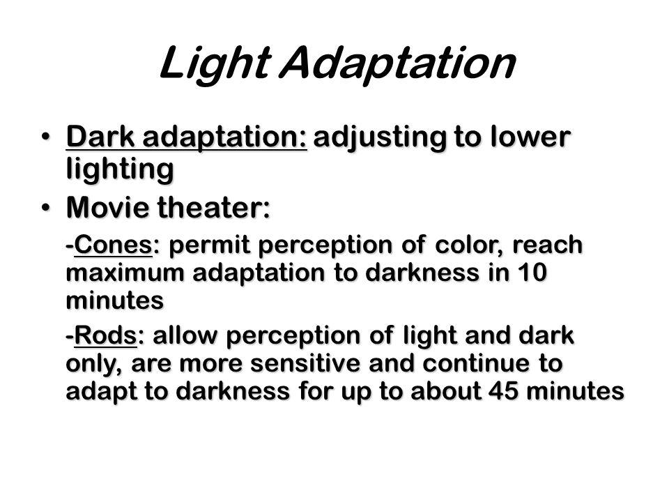 Light Adaptation Dark adaptation: adjusting to lower lighting Dark adaptation: adjusting to lower lighting Movie theater: Movie theater: -Cones: permi