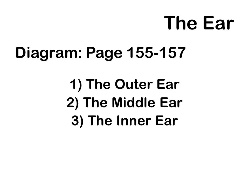 The Ear Diagram: Page 155-157 1)The Outer Ear 2)The Middle Ear 3)The Inner Ear