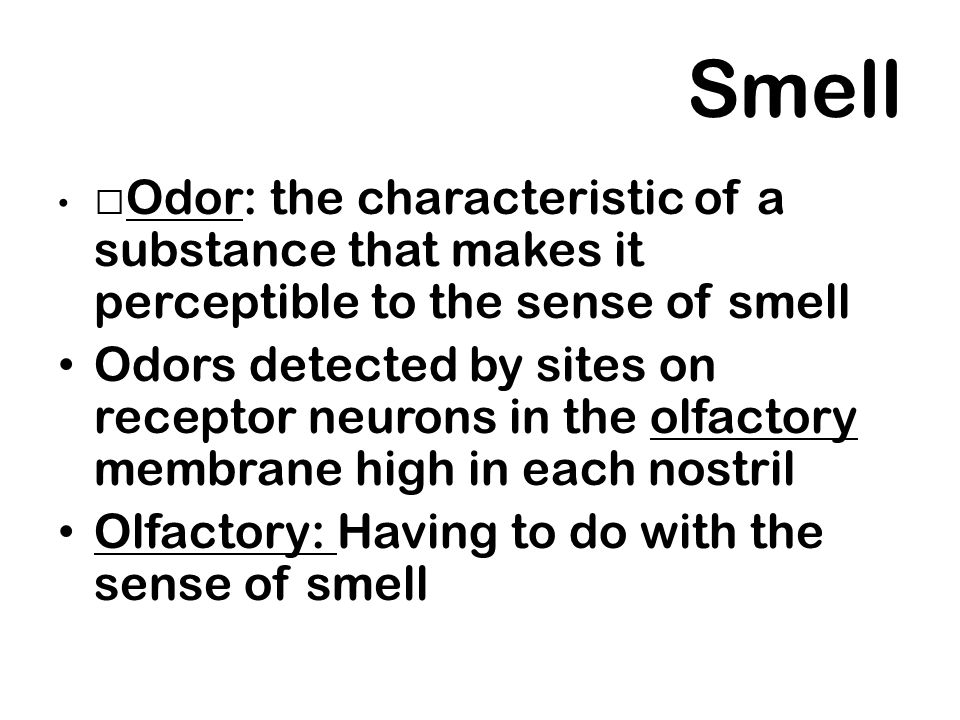 Smell Odor: the characteristic of a substance that makes it perceptible to the sense of smell Odors detected by sites on receptor neurons in the olfac