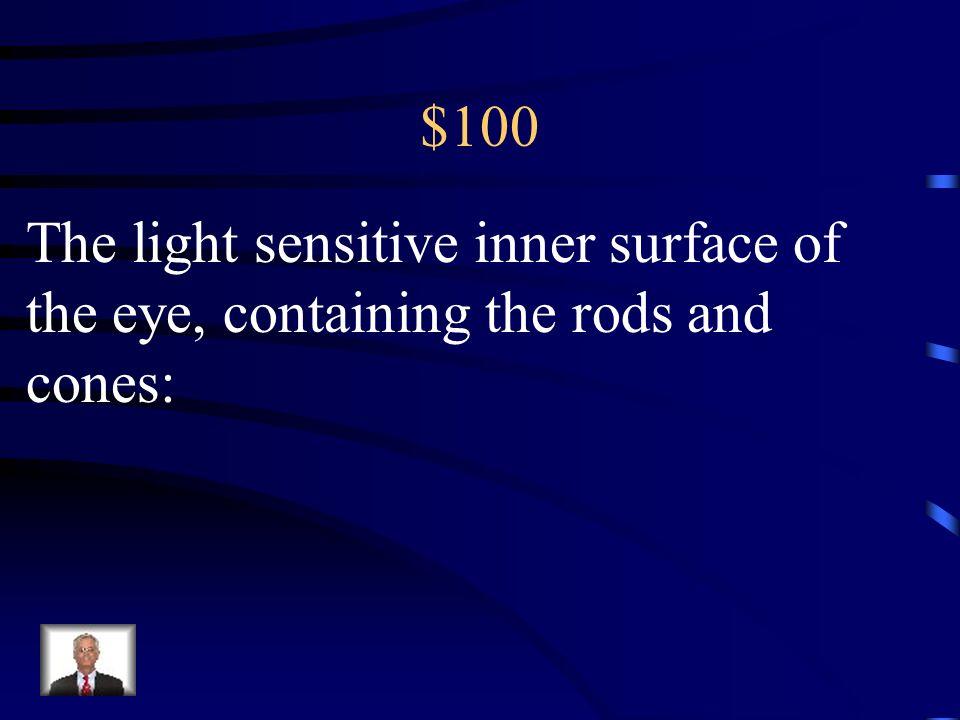 $500 Sensorimotor Preoperational Concrete Formal