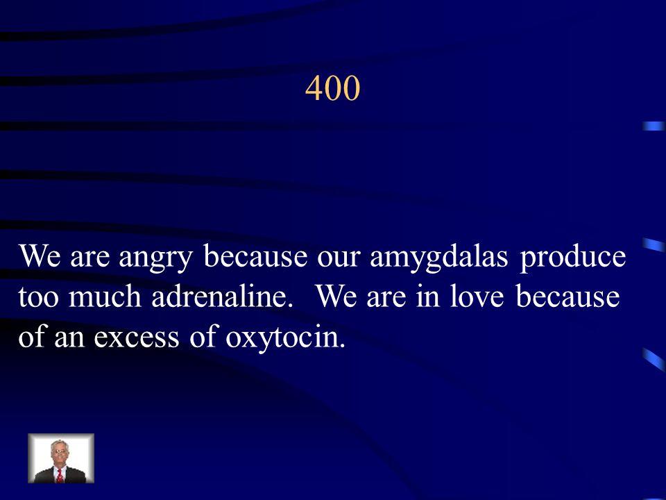 300 Humanistic