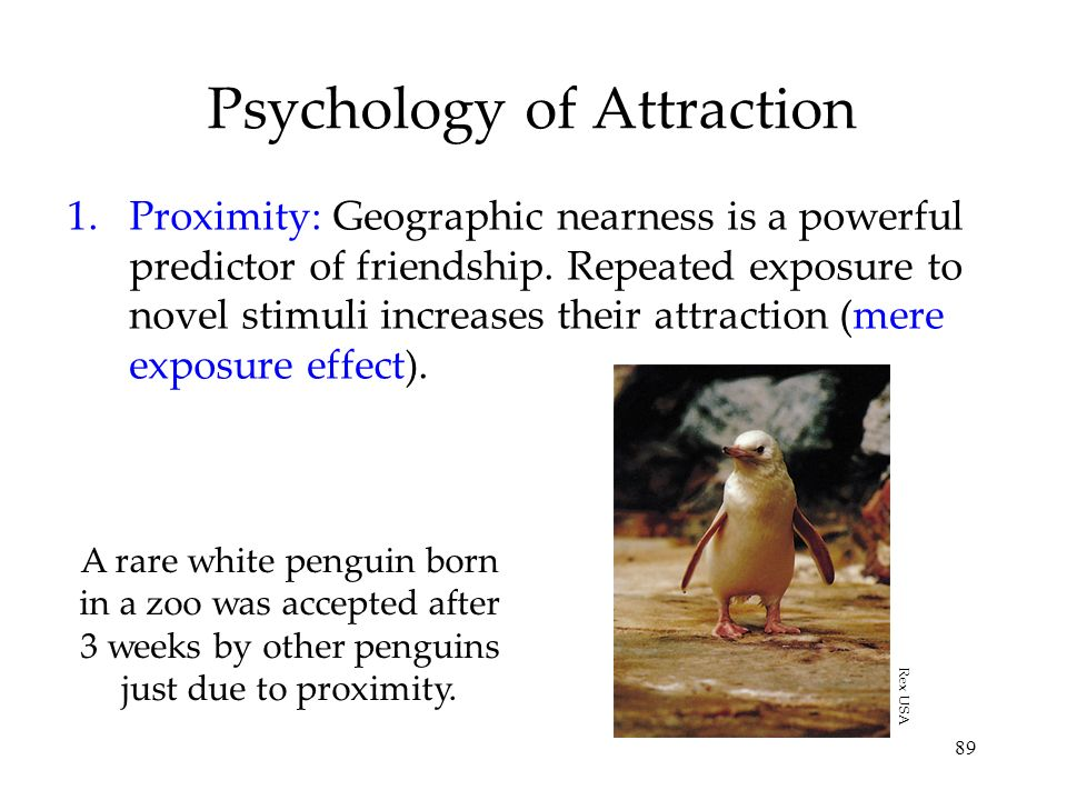 89 Psychology of Attraction 1.Proximity: Geographic nearness is a powerful predictor of friendship. Repeated exposure to novel stimuli increases their