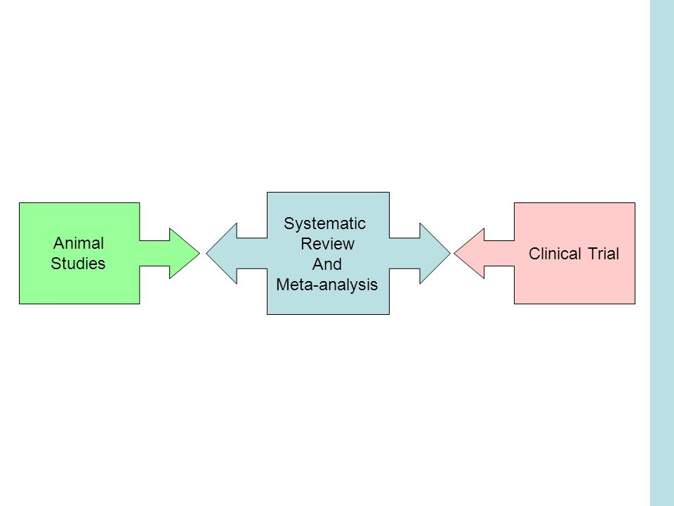 Animal Studies Clinical Trial Systematic Review And Meta-analysis