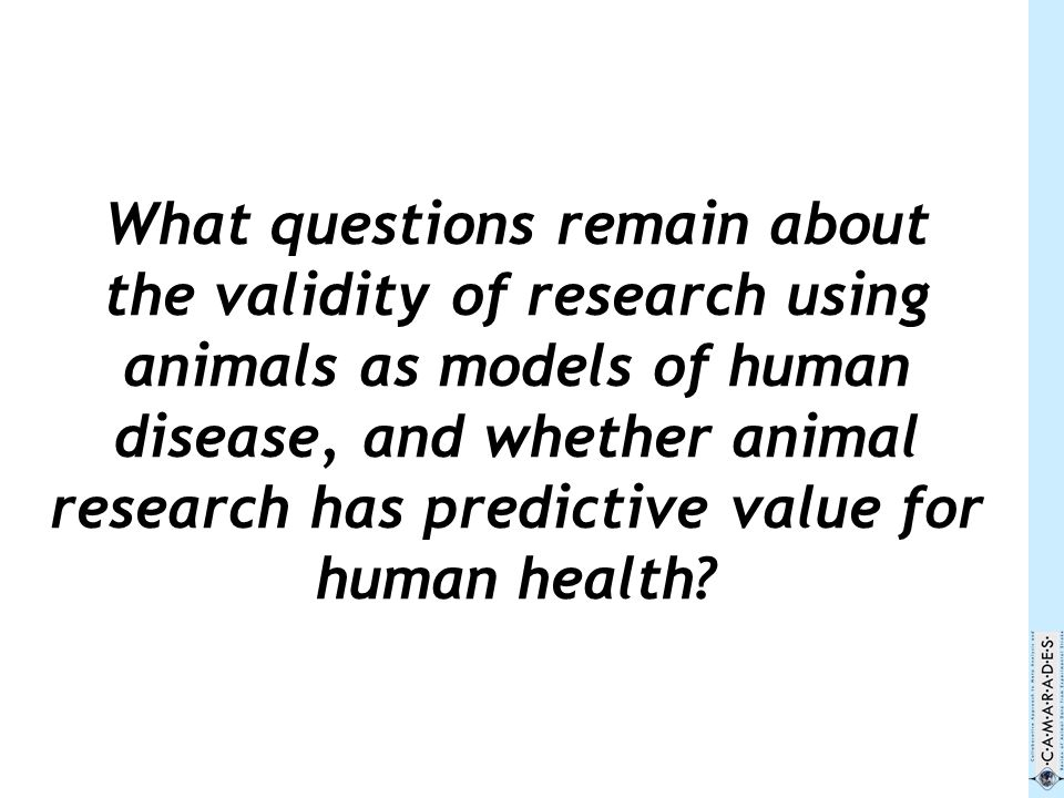 What questions remain about the validity of research using animals as models of human disease, and whether animal research has predictive value for human health?