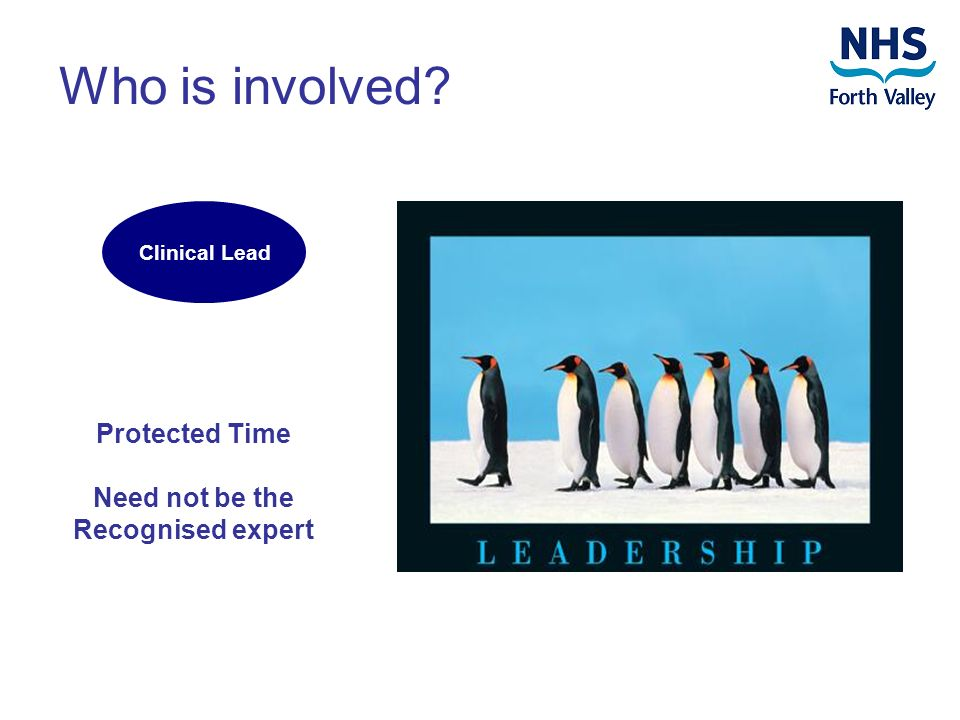 Who is involved? Clinical Lead Protected Time Need not be the Recognised expert
