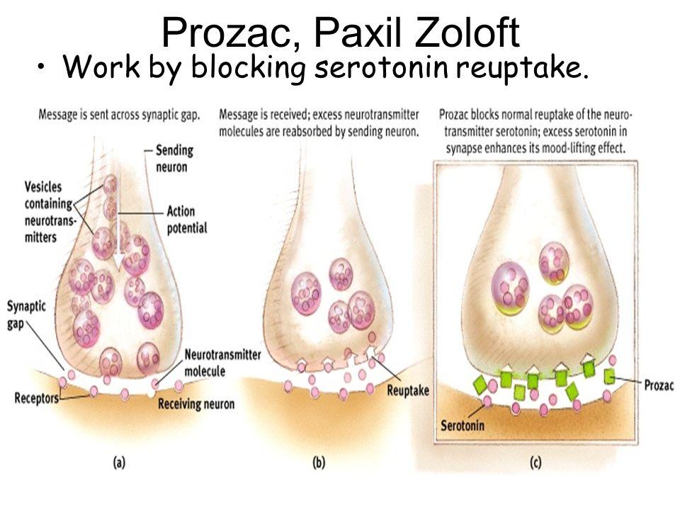 Prozac, Paxil Zoloft Work by blocking serotonin reuptake.