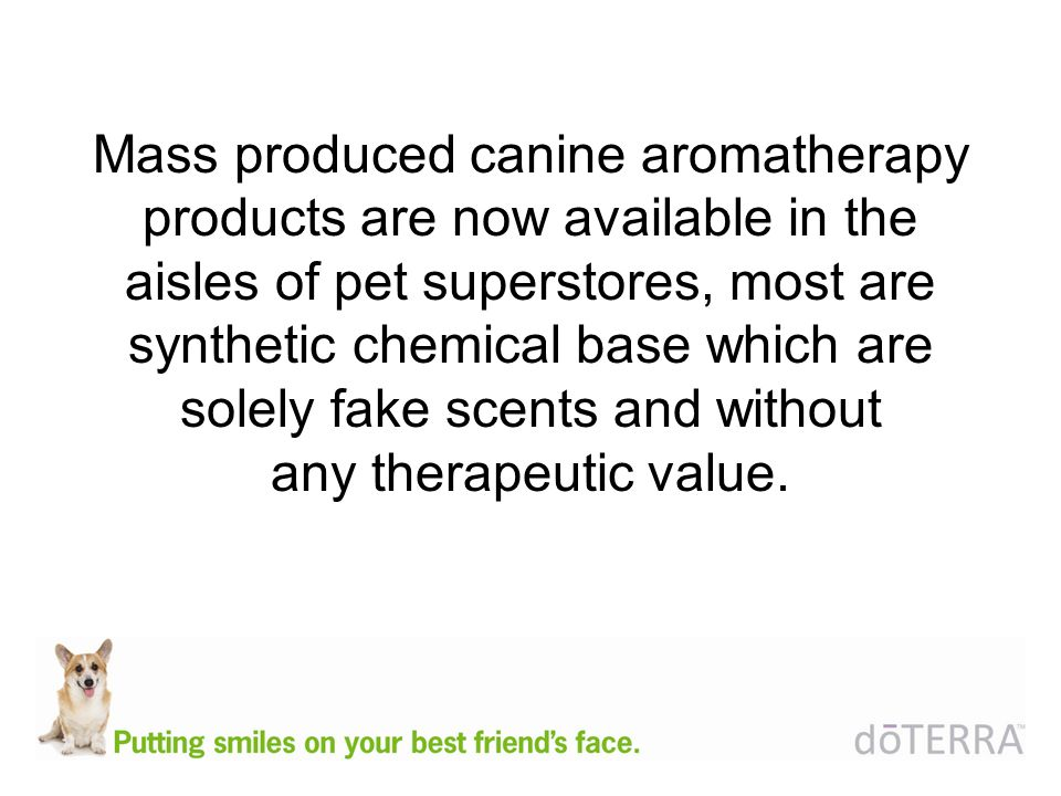 Mass produced canine aromatherapy products are now available in the aisles of pet superstores, most are synthetic chemical base which are solely fake