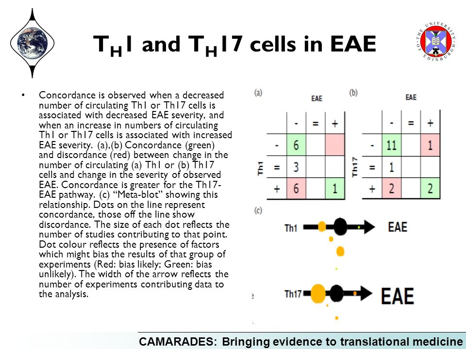 CAMARADES: Bringing evidence to translational medicine T H 1 and T H 17 cells in EAE Concordance is observed when a decreased number of circulating Th1 or Th17 cells is associated with decreased EAE severity, and when an increase in numbers of circulating Th1 or Th17 cells is associated with increased EAE severity.