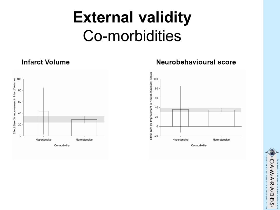 External validity Co-morbidities Infarct VolumeNeurobehavioural score