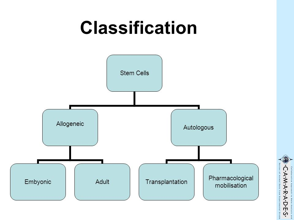Classification Stem Cells Allogeneic EmbyonicAdult Autologous Transplantation Pharmacological mobilisation