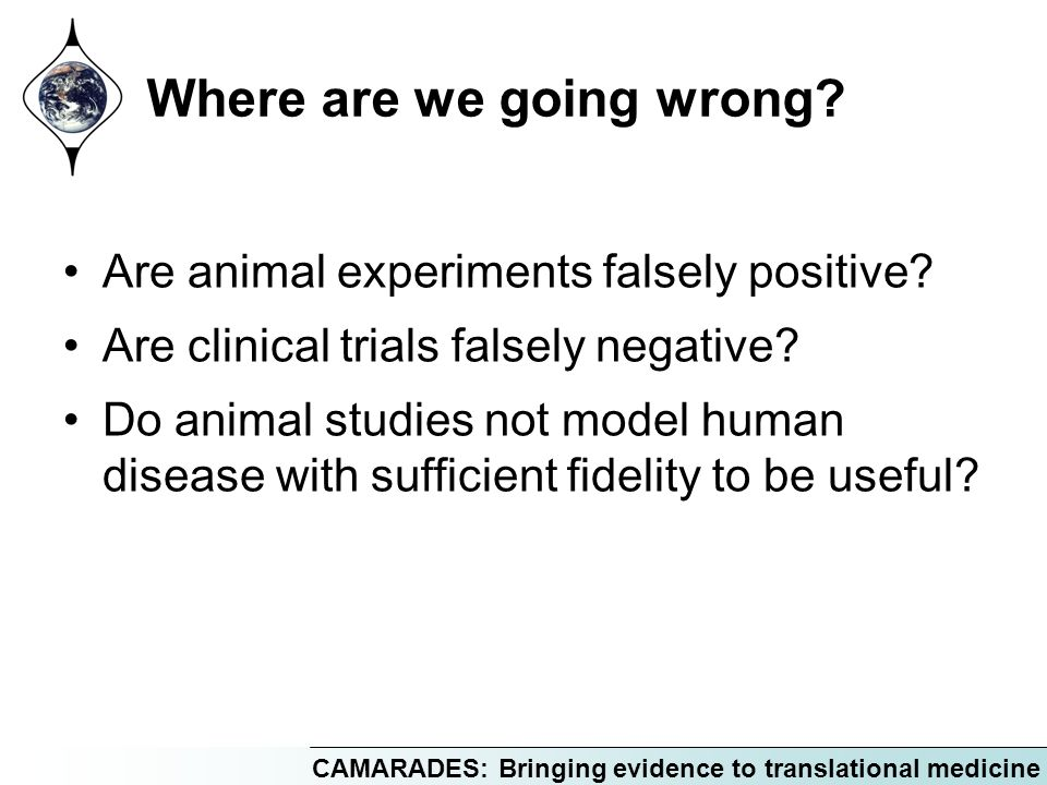Where are we going wrong? Are animal experiments falsely positive? Are clinical trials falsely negative? Do animal studies not model human disease wit