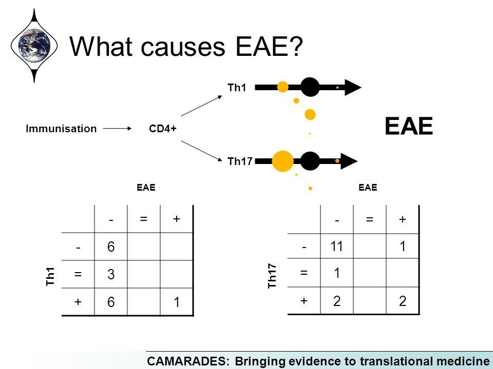 CAMARADES: Bringing evidence to translational medicine Immunisation EAE Th17 Th1 CD4+ -=+ -6 =3 +61 EAE Th1 -=+ -111 =1 +22 EAE Th17 What causes EAE