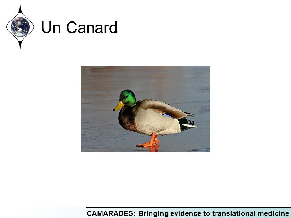 CAMARADES: Bringing evidence to translational medicine Un Canard