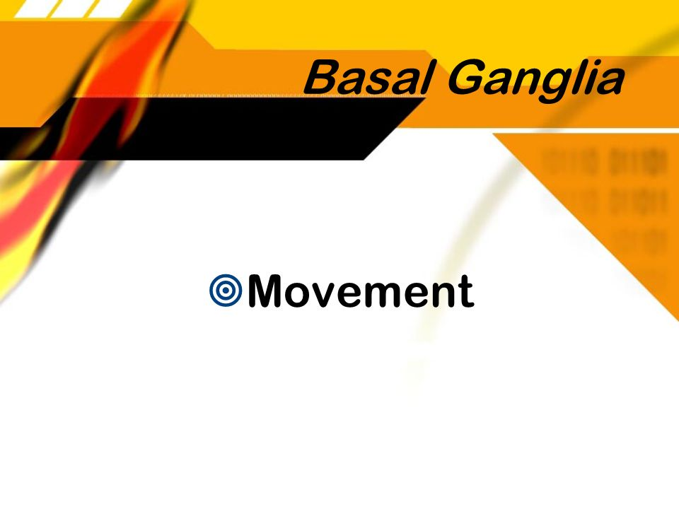 Basal Ganglia Movement