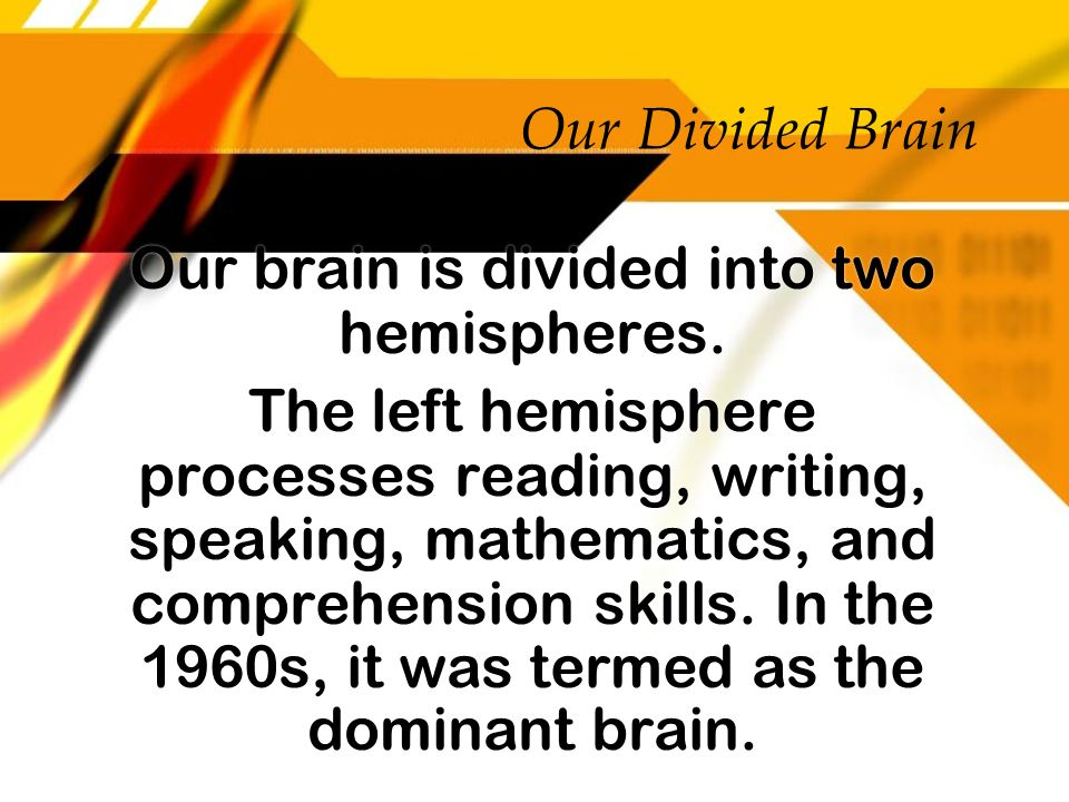 Our Divided Brain Our brain is divided into two hemispheres. The left hemisphere processes reading, writing, speaking, mathematics, and comprehension