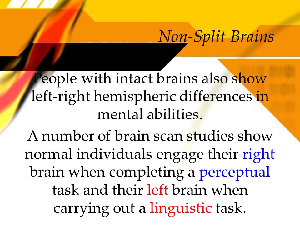 Non-Split Brains People with intact brains also show left-right hemispheric differences in mental abilities. A number of brain scan studies show norma