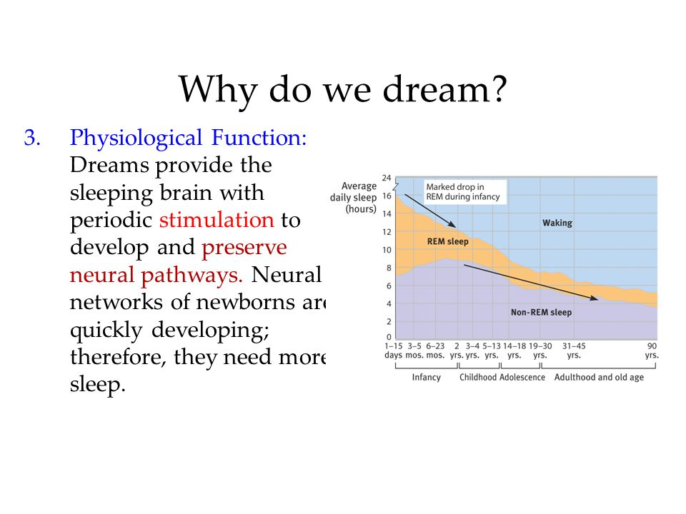 Why do we dream? 3.Physiological Function: Dreams provide the sleeping brain with periodic stimulation to develop and preserve neural pathways. Neural