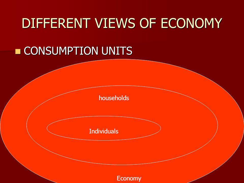 DIFFERENT VIEWS OF ECONOMY CONSUMPTION UNITS CONSUMPTION UNITS households Economy Individuals
