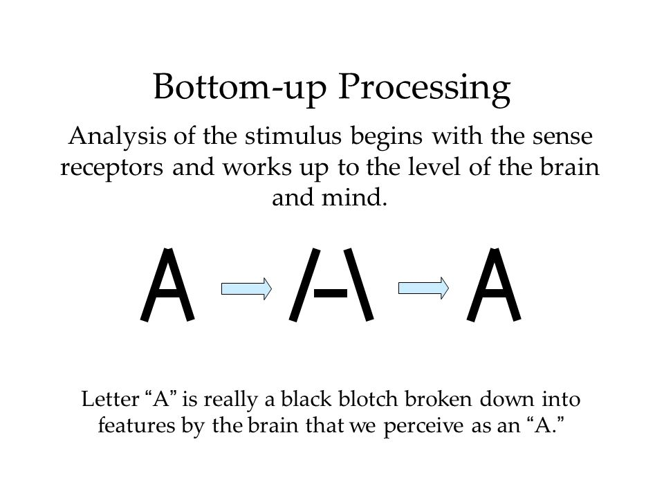 Bottom-up Processing Analysis of the stimulus begins with the sense receptors and works up to the level of the brain and mind. Letter A is really a bl