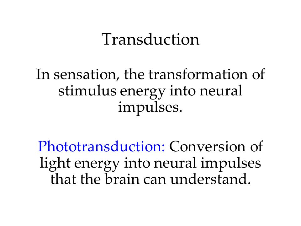 Transduction In sensation, the transformation of stimulus energy into neural impulses. Phototransduction: Conversion of light energy into neural impul