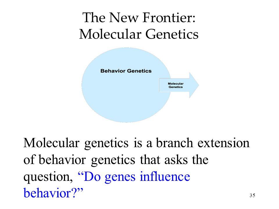 35 The New Frontier: Molecular Genetics Molecular genetics is a branch extension of behavior genetics that asks the question, Do genes influence behav