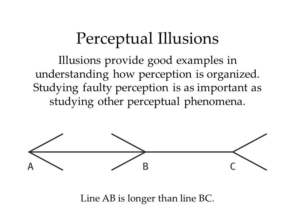 Perceptual Illusions Illusions provide good examples in understanding how perception is organized. Studying faulty perception is as important as study
