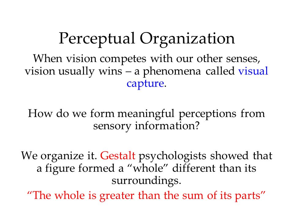 Perceptual Organization When vision competes with our other senses, vision usually wins – a phenomena called visual capture.