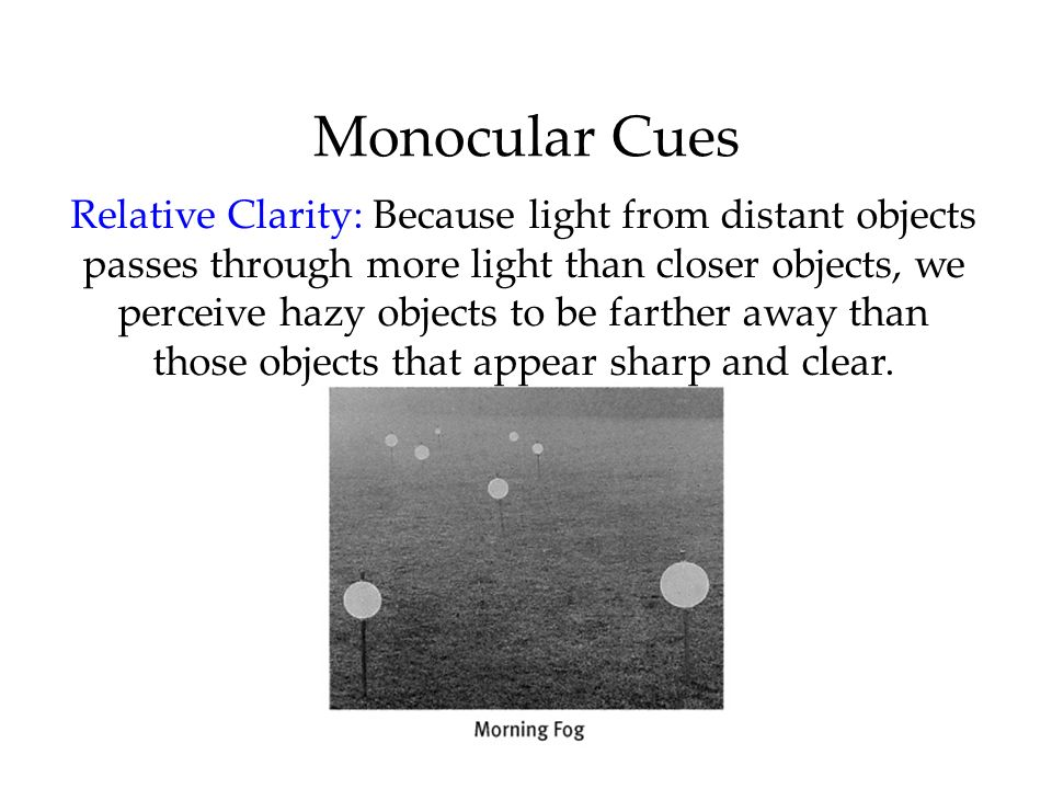 Monocular Cues Relative Clarity: Because light from distant objects passes through more light than closer objects, we perceive hazy objects to be farther away than those objects that appear sharp and clear.