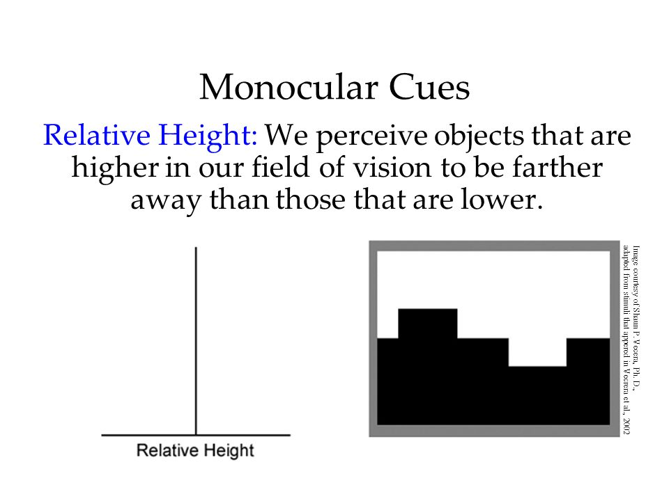 Monocular Cues Relative Height: We perceive objects that are higher in our field of vision to be farther away than those that are lower. Image courtes