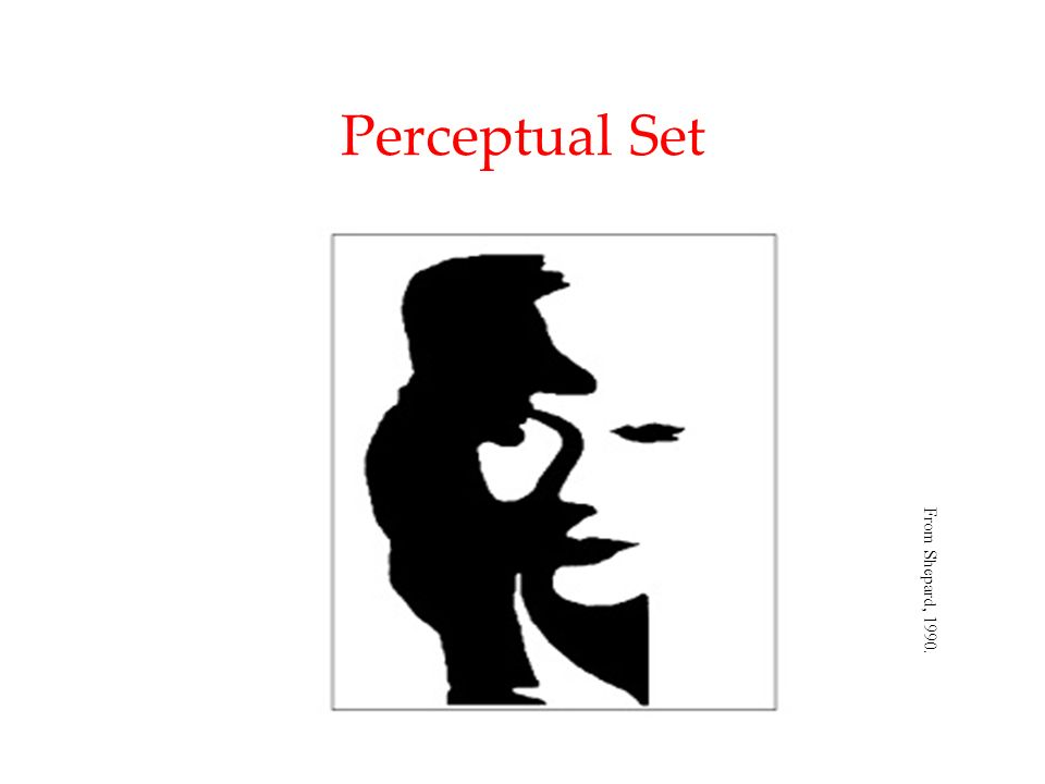 Perceptual Set From Shepard, 1990.