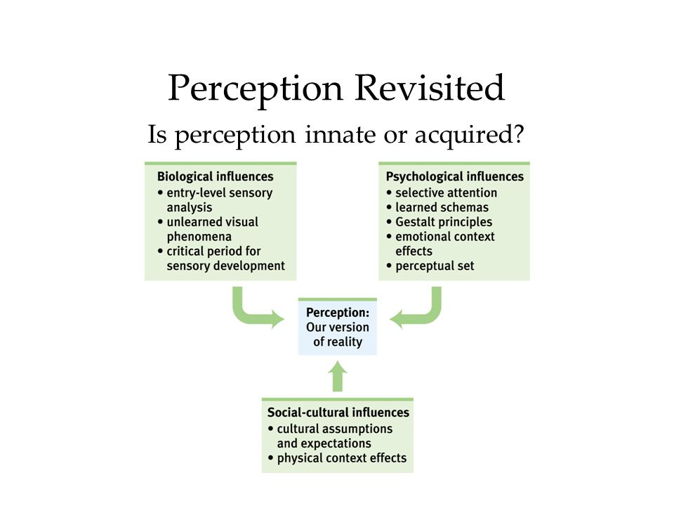 Perception Revisited Is perception innate or acquired?