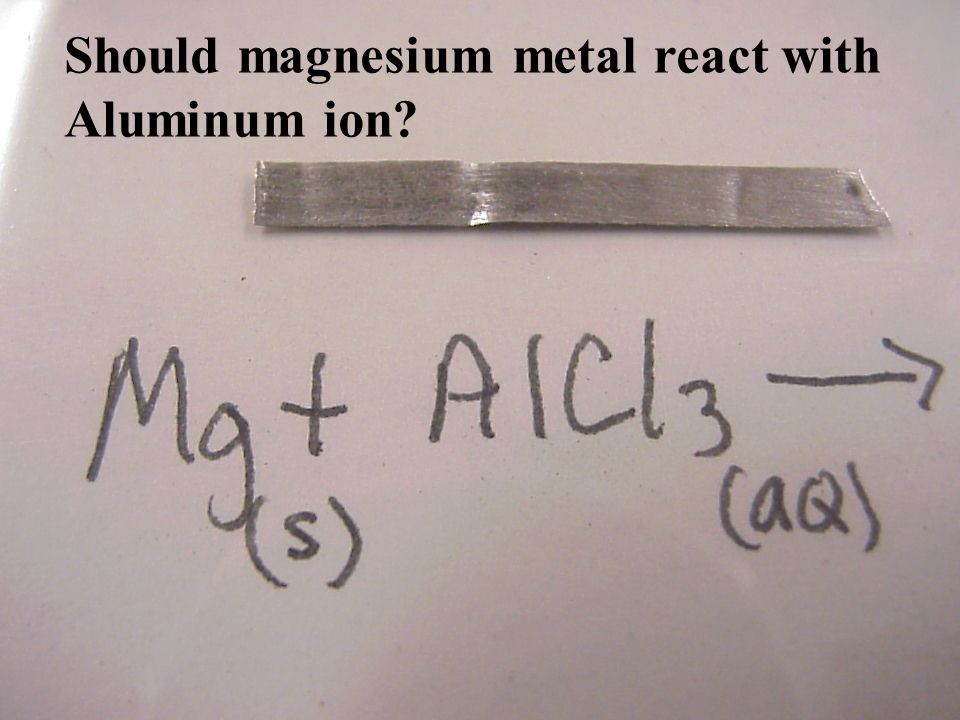 Should magnesium metal react with Aluminum ion
