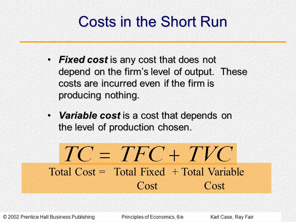 © 2002 Prentice Hall Business PublishingPrinciples of Economics, 6/eKarl Case, Ray Fair Costs in the Short Run Fixed cost is any cost that does not depend on the firms level of output.